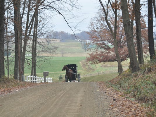 Amish cook buggy photo.jpg
