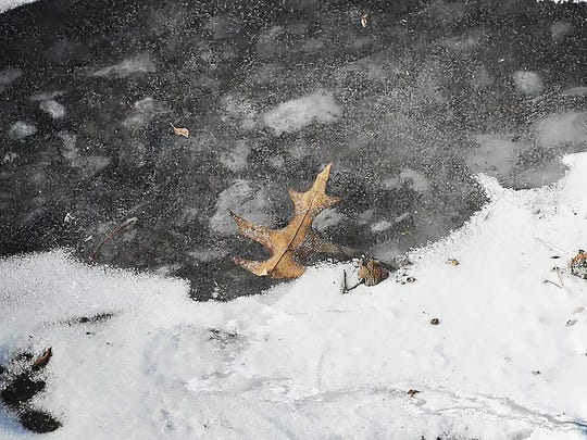 A leaf is frozen under the water of a pond in Glen Rock on Wednesday.
