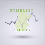 Sales trends & stats: Somerset