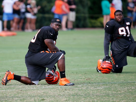 Defensive linemen DeShawn Williams (left) looks to make his mark on the Bengals in 2016.