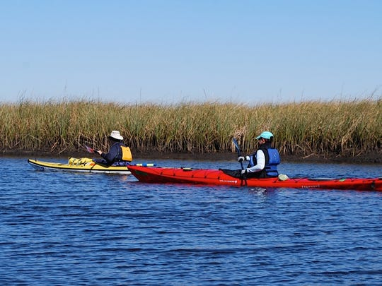 kayakers on Ochlockonee River's Bear Creek
