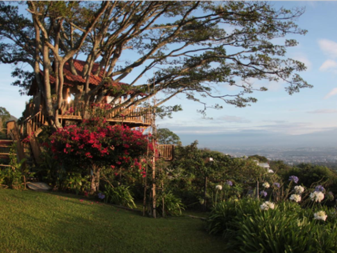 Treehouse, Costa Rica (from $71 per night): In the