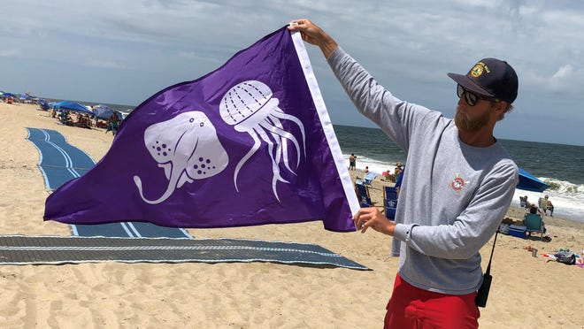 Ben Battaile, assistant supervisor of Kill Devil Hills Ocean Rescue, displays a flag used for warning swimmers of hazardous marine animals on Thursday, July 16, 2020, in Kill Devil Hills, N.C.