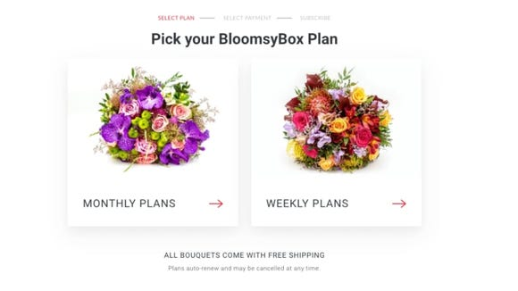 The BloomsyBox website is easy to use and order from.