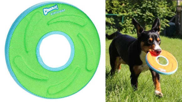 This durable flying disc is great for fetch.