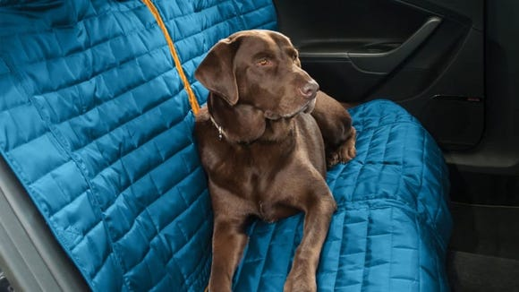 Protect your seats from wet, muddy dogs.