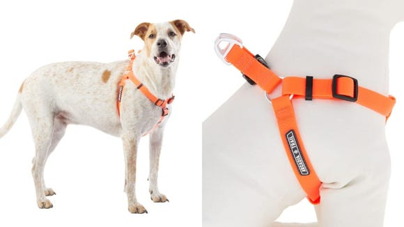 This brightly colored harness has a waterproof coating.