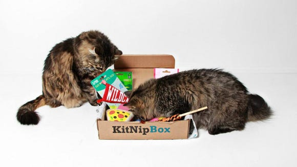 This box is a must-have for cat owners.