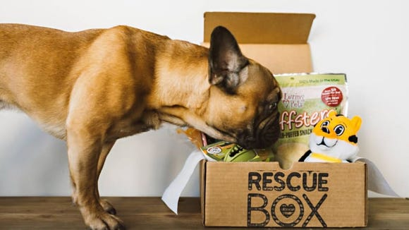 Give an amazing gift while supporting shelter animals.