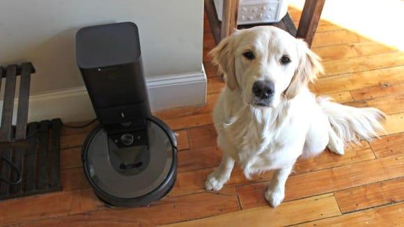 This vacuum is a major plus for pet parents.