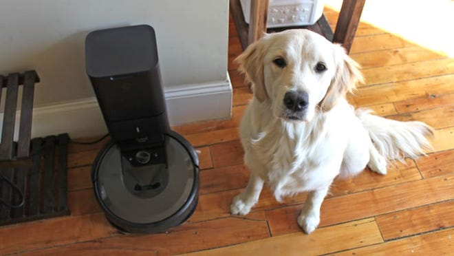 If you've got a pet around, this is the vacuum you need.