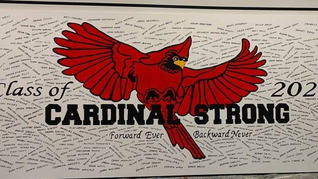 This artwork by Jacksonville High School art teacher Bernie Rosage Jr. was done as a tribute to the Class of 2020.