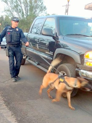 A handler works the new K-9 officer on a sweep of vehicles entering at the back race track entrance.