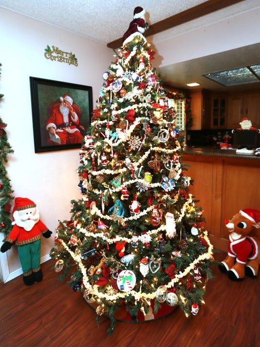 636168456944931183-Christmas-Trees-9.jpg