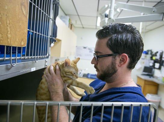 Colleges In Phoenix Az >> Midwestern University opens first AZ vet school in Glendale
