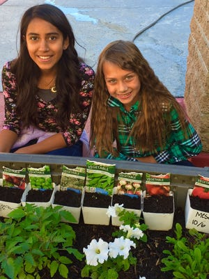 La Quinta Middle School students planted a variety of vegetables and flowers.
