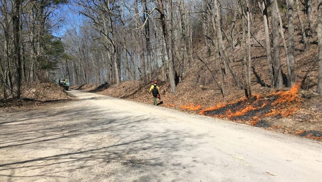 Fire crews set controlled burns to create a fire line in order to contain a wildfire at St. Mary's Wilderness.