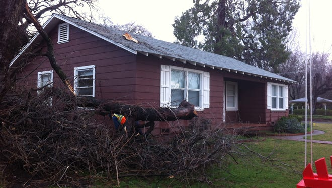 High winds toppled several large branches from an oak tree, severing a gas line at this Wilshire Drive home Tuesday morning.