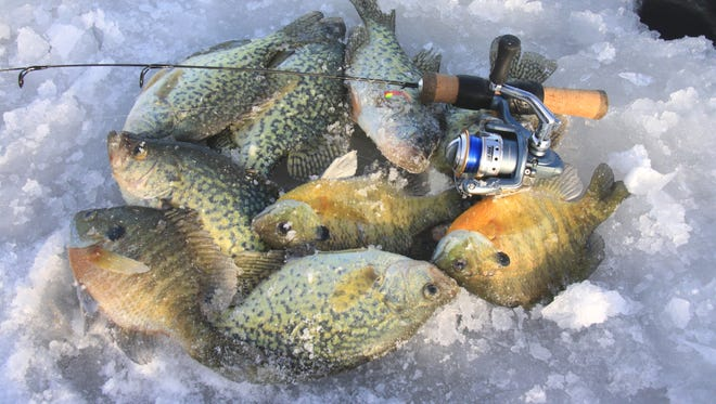 Targeting deep basins for panfish is my favorite winter strategy.