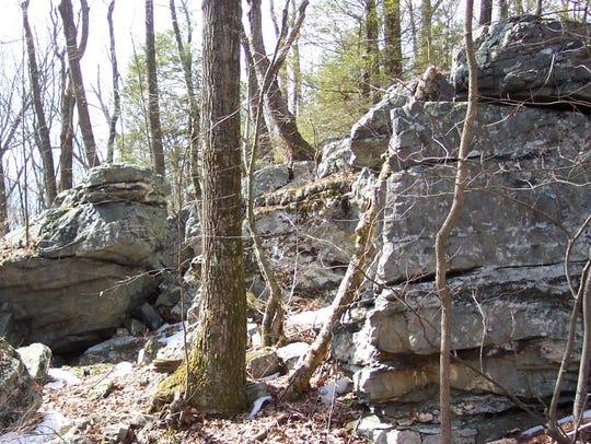 An outcrop of quartzite, metamorphosed sandstone at