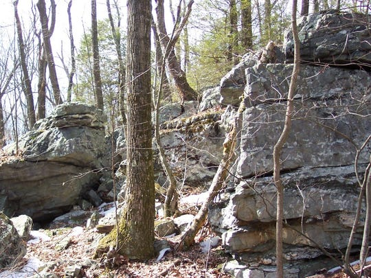 An outcrop of quartzite, metamorphosed sandstone at White Rocks.