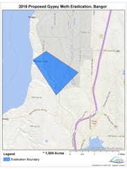 The Washington State Department of Agriculture will begin spraying a pesticide to eradicate invasive gypsy moths over Naval Base Kitsap-Bangor next week. This map shows the boundaries of the spray area.