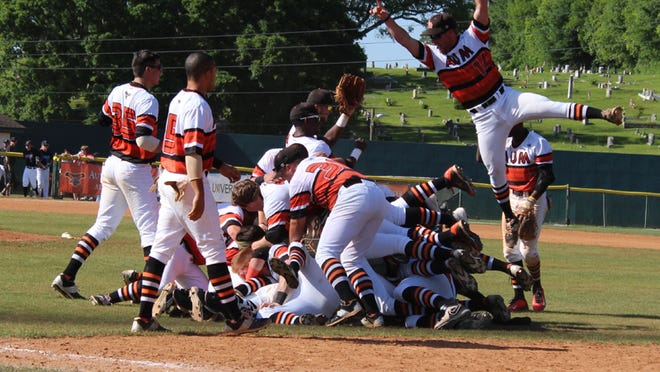 AUM celebrates winning the SSAC baseball tournament championship on Saturday.