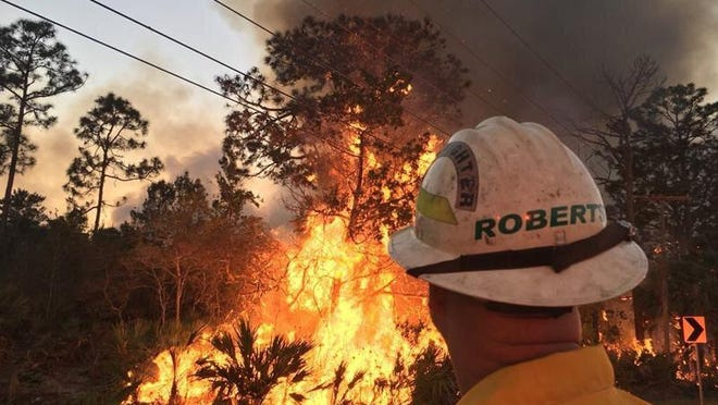 A Florida Fire Service official monitors a wildfire near Interstate 95 in New Smyrna Beach two years ago. Rain in recent days has eliminated the need for a burn ban across unincorporated Volusia County, but it hasn't eliminated the need for property owners to burn yard waste safely.
