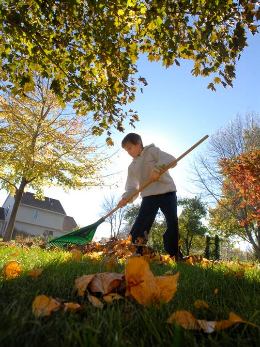 Leaf pick-up