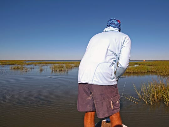 Joey Farah spots a redfish and tries to settle a streamer