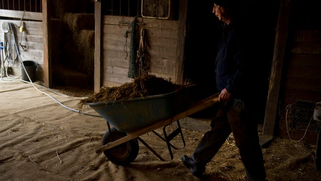 "Mucking his horse, Scootin' Chief's, stall is a daily chore for Jesse Larkins. ""This horse really gets it dirty,"" Larkins said adding the horse doesn't show any remorse."