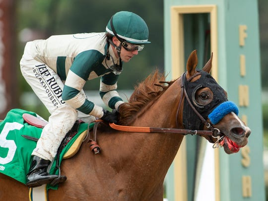 In a photo provided by Benoit Photo, Mucho Gusto and jockey Joseph Talamo win the Grade III, $150,000 Robert B. Lewis Stake horse race Saturday, Feb. 2, 2019, at Santa Anita in Arcadia, Calif. (Benoit Photo via AP)