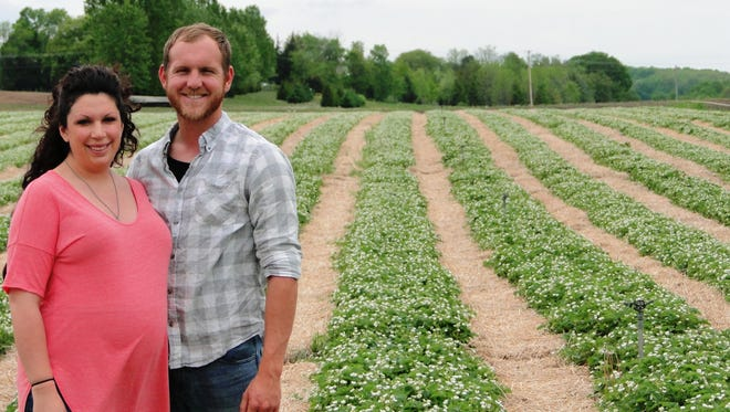 Danielle and Tim Clark will open their strawberry farm for its first season in mid-June. The couple recently purchased the farm from Wayne and Cindy Zastrow and have renamed it Mayberry Farms.