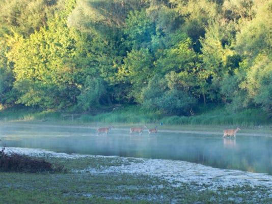 webart sports outdoors hunting 1