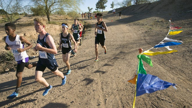 Runners during the Division 4 Boys AIA State Cross Country Meet at Cave Creek Golf Course in Phoenix on Saturday, November 7, 2015.