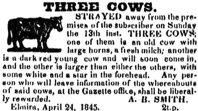 An April 24, 1845, an Elmira Gazette ad seeking three missing cows from Elmira.