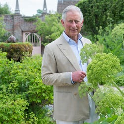 Prince Charles' gardens at Highgrove Estate