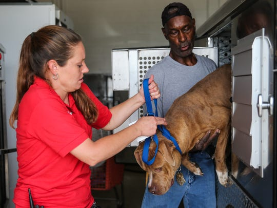 Animal Control Officer Lindsey Newton and William Stanley help a surrendered dog out of the truck Monday, June 19, at the San Angelo Animal Shelter.