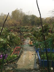 Rainy day for garden work at the Intervale Community