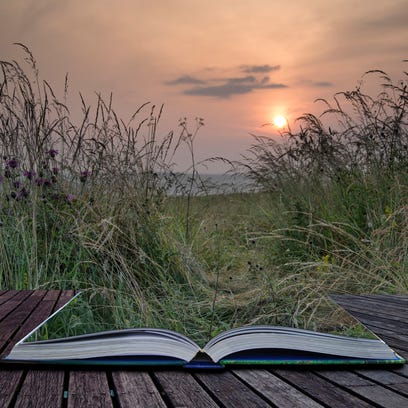 Creative concept pages of book Landscape view through uncultivated verge in countryside to rising sun