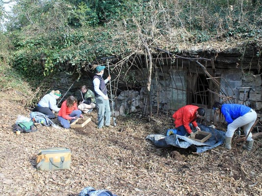 MTSU students and TDOA personnel excavating outside the cave