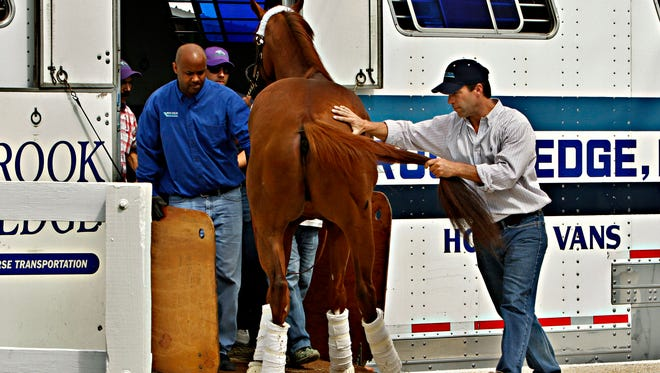Brookledge Horse Vans employees help  back Kentucky Derby winner California Chrome off the van upon his arrival at Pimlico Race Course in Baltimore on Monday.