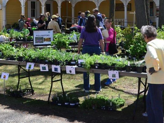 Master-Gardeners-Eco-Fair.jpg
