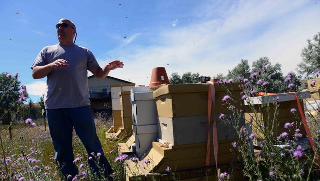 Retired Maj. Brian Rogers, a master beekeeper with the Great Falls Wanna-Beekeeping Club, shows the new home of 25,000 relocated honey bees in Great Falls. The bees were saved by the combined efforts of three enlisted Airmen, a biologist employed by the 341st Civil Engineer Squadron and a local master beekeeper.