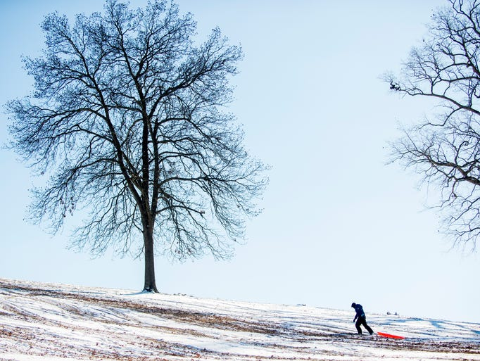 A sledder walks back up to the top of a hill at Lakeshore