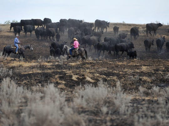 The $2.5 million in funding to help ranchers and farmers comes from U.S. Department of Agriculture's Environmental Quality Incentive Program,