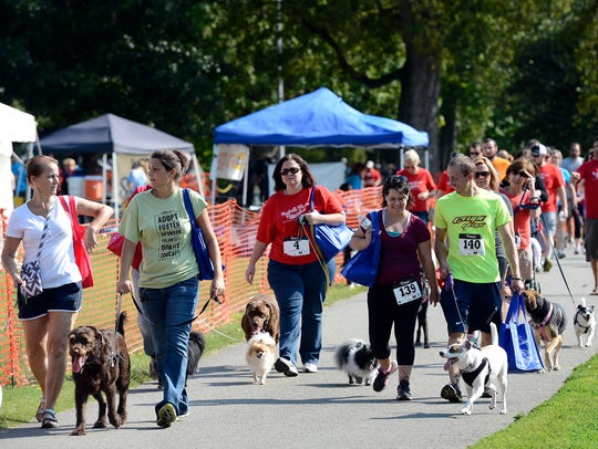 Owners walk their dogs on the 1-mile Music City Mutt Strutt during a previous Dog Day Festival at Centennial Park.