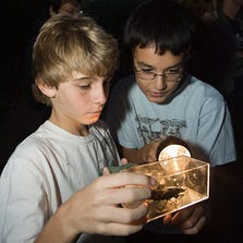 Flashlight Tours at the Desert Botanical Garden are fun for the whole family.