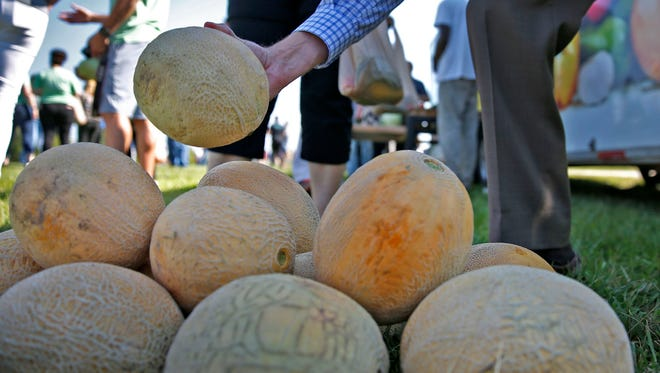Cantaloupes are some of the crops at the new urban farm partnering The Finish Line, Inc. and Brandywine Creek Farms, Thursday, August 23, 2017.  Visitors to the opening ceremony were given some fresh produce for a small donation.