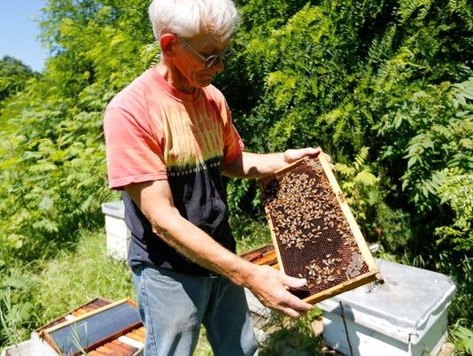 AP-beekeeper.JPG